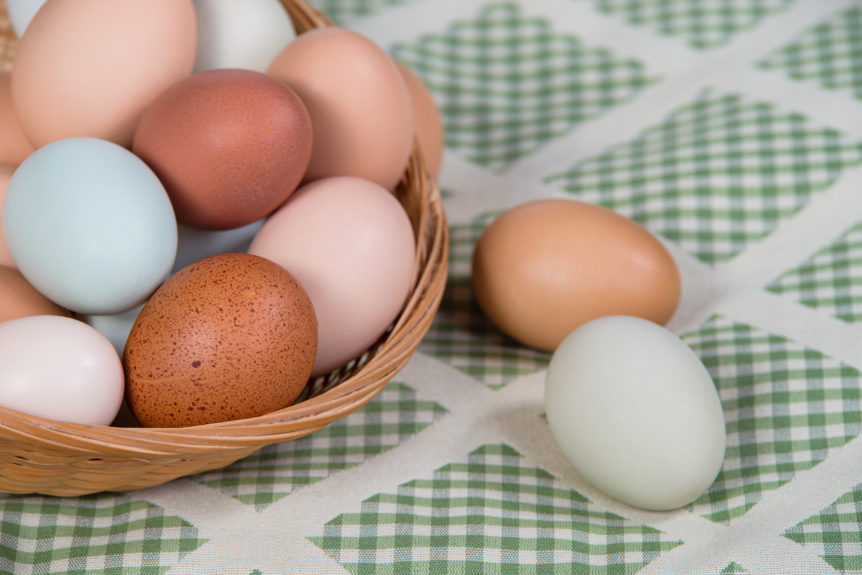 Assortment of different color, fresh, chicken eggs in a basket, closeup with shallow depth of field. Green shade kitchen textile background.